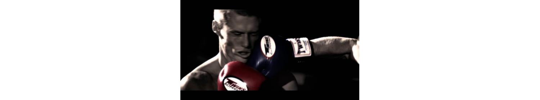 боксерские перчаткиодежда для единоборств