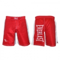 Шорты MMA Everlast CO-3647-R (XL)