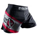 Шорты для кикбоксинга Hayabusa Glory Kickboxing